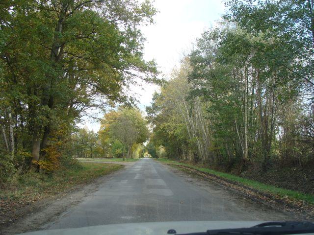 Idyllisch: der Weg nach Ohne. Doch die ländlichen Strukturen sind gefährdet. (Foto: Birte Vogel)